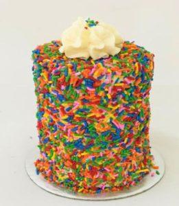 MMSA Mini Cake Catalogue-5